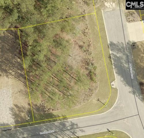 102 Southpark Place, Leesville, SC 29070 (MLS #463541) :: EXIT Real Estate Consultants