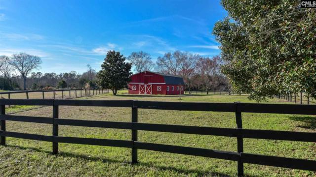 125 Hunting Creek Road, Hopkins, SC 29061 (MLS #463731) :: The Meade Team