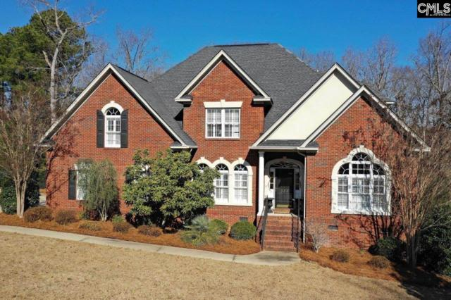 324 Sienna Drive, Chapin, SC 29036 (MLS #463770) :: EXIT Real Estate Consultants