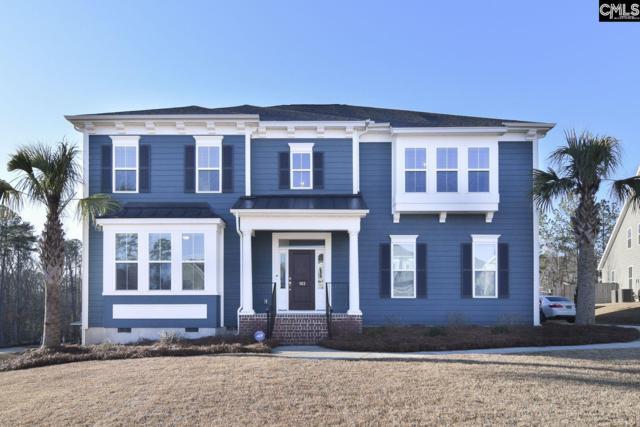 103 Avalon Court, Chapin, SC 29036 (MLS #463841) :: Home Advantage Realty, LLC