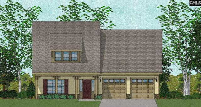 349 Renoir Lane, Chapin, SC 29036 (MLS #463873) :: EXIT Real Estate Consultants
