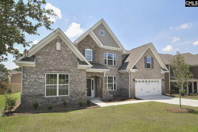 211 Sterling Brook Drive, Lexington, SC 29072 (MLS #463954) :: The Olivia Cooley Group at Keller Williams Realty