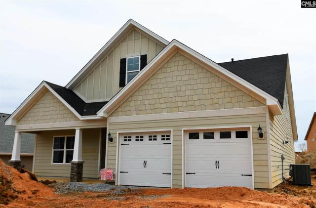337 Renoir Lane 198, Chapin, SC 29036 (MLS #464135) :: The Meade Team