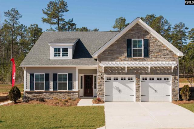 343 Remoir Lane, Chapin, SC 29072 (MLS #464304) :: EXIT Real Estate Consultants