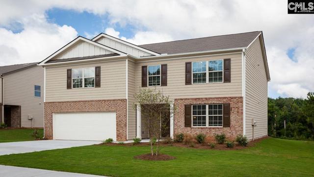173 Coatbridge Drive, Blythewood, SC 29016 (MLS #464369) :: Home Advantage Realty, LLC