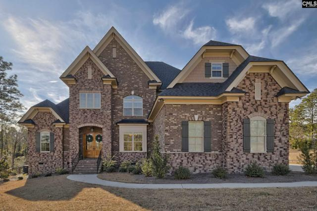 313 Bluestem Drive, Elgin, SC 29045 (MLS #464472) :: The Meade Team