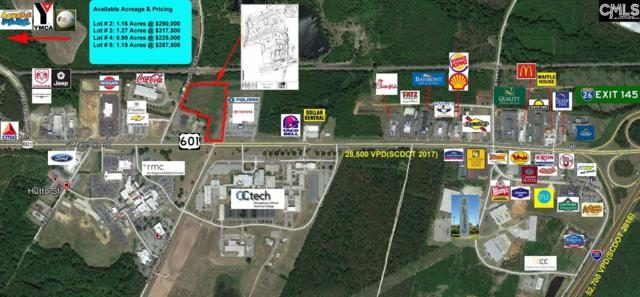 00 Hwy 601, Orangeburg, SC 29118 (MLS #464497) :: EXIT Real Estate Consultants