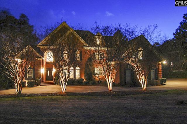 70 Cowdray Park, Columbia, SC 29223 (MLS #464698) :: Home Advantage Realty, LLC