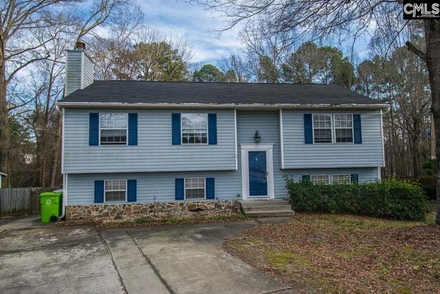 17 Seaford Court, Irmo, SC 29063 (MLS #464792) :: The Meade Team