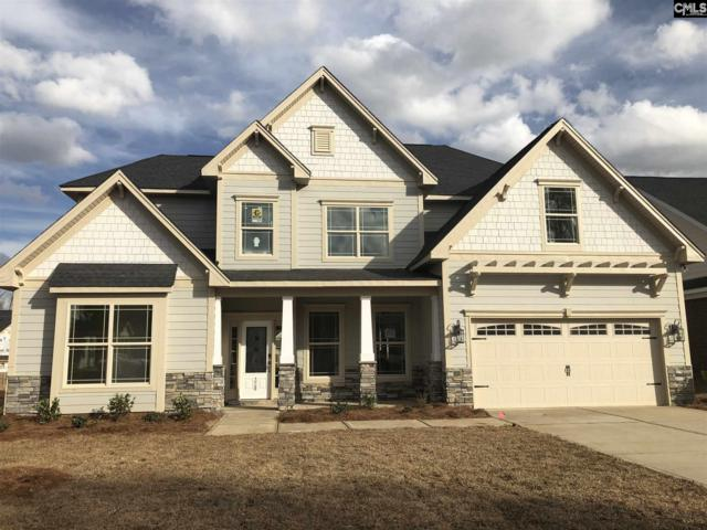 328 Lightning Bug Lane, Lexington, SC 29072 (MLS #464831) :: The Olivia Cooley Group at Keller Williams Realty