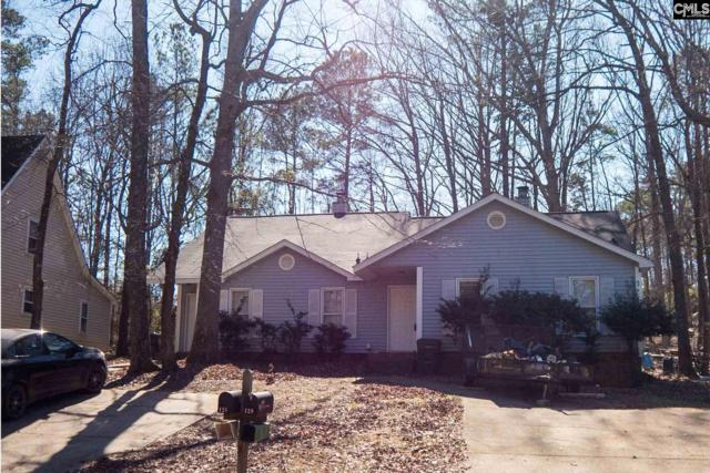 125-129 Thames Valley Court, Irmo, SC 29063 (MLS #464882) :: EXIT Real Estate Consultants