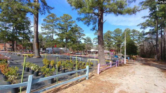 10616 Broad River Road, Irmo, SC 29063 (MLS #464893) :: EXIT Real Estate Consultants