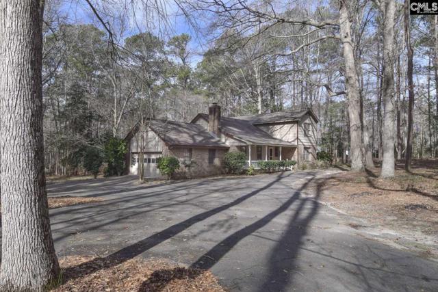 132 Devin Drive, Lexington, SC 29072 (MLS #464952) :: EXIT Real Estate Consultants
