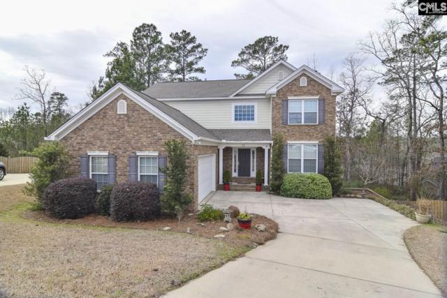 15 Barberry Court, Columbia, SC 29212 (MLS #464983) :: Home Advantage Realty, LLC