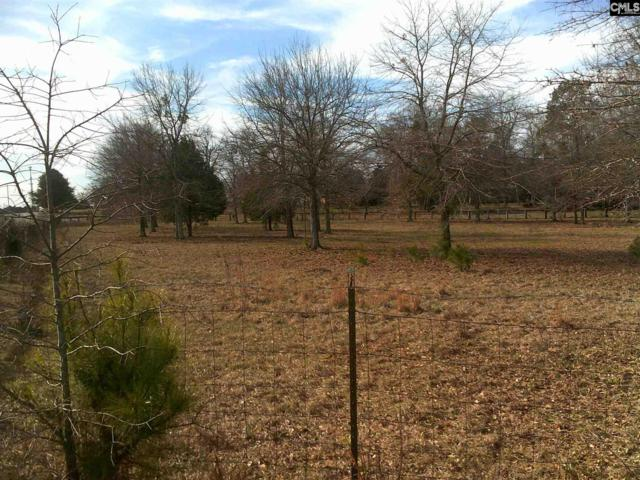 2585 Cedar Grove Road, Leesville, SC 29070 (MLS #464988) :: Home Advantage Realty, LLC