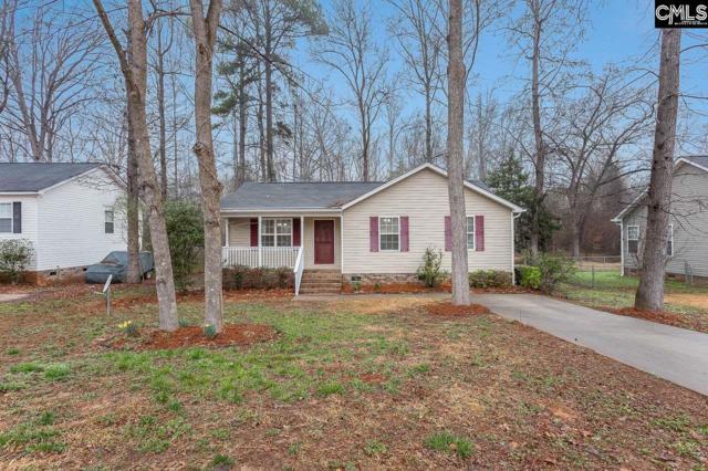 120 Devonport Drive, Irmo, SC 29063 (MLS #465060) :: Home Advantage Realty, LLC