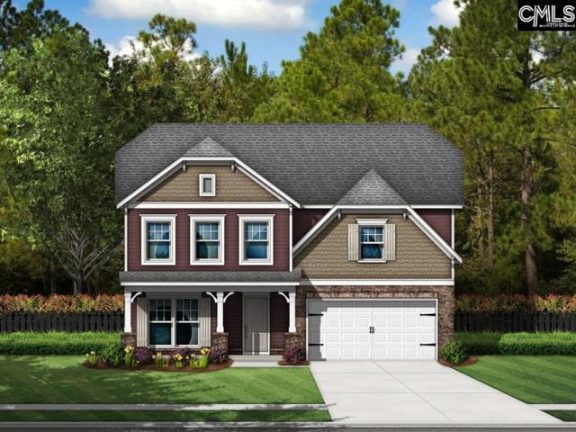 619 Dixie River Court, Lexington, SC 29073 (MLS #465072) :: EXIT Real Estate Consultants