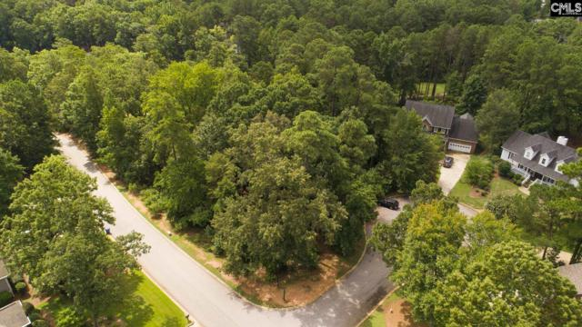 703 Oxenbridge Court, Chapin, SC 29036 (MLS #465125) :: EXIT Real Estate Consultants
