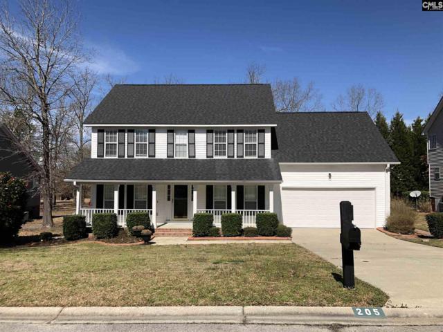 205 E Hampton Way, Columbia, SC 29229 (MLS #465149) :: Home Advantage Realty, LLC