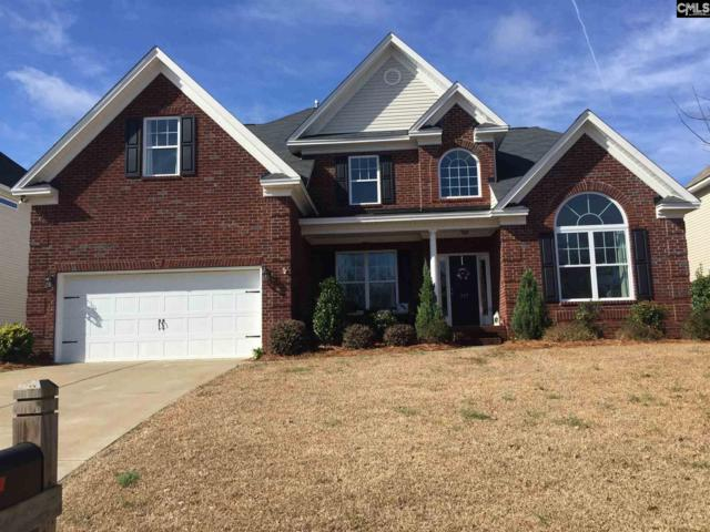 317 Bronze Drive, Lexington, SC 29072 (MLS #465157) :: EXIT Real Estate Consultants