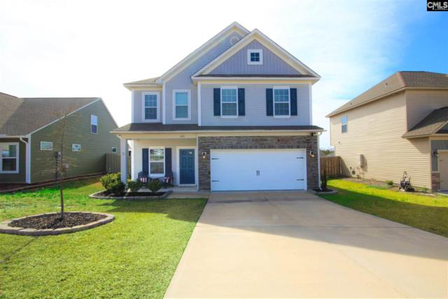 429 Walking Lane, Lexington, SC 29073 (MLS #465158) :: EXIT Real Estate Consultants