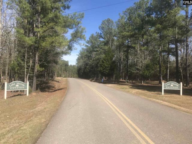203 Scooter Bridge Road, Batesburg, SC 29006 (MLS #465204) :: Home Advantage Realty, LLC