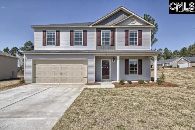 226 Elsoma Drive, Chapin, SC 29036 (MLS #465301) :: EXIT Real Estate Consultants