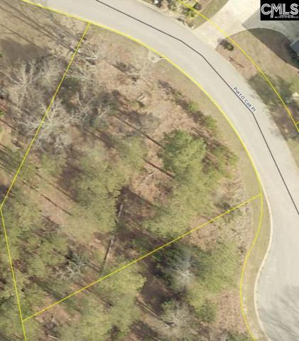 106 Port O Call Place, Leesville, SC 29070 (MLS #465324) :: EXIT Real Estate Consultants