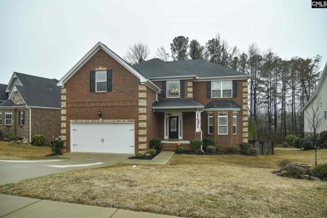 216 Massey Circle, Chapin, SC 29036 (MLS #465330) :: The Meade Team