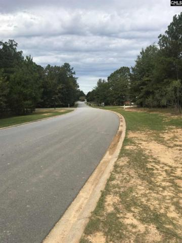 Lot 4 Plantation Point Road, Prosperity, SC 29127 (MLS #465406) :: The Olivia Cooley Group at Keller Williams Realty