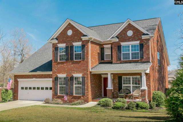 6 Kagle Court, Chapin, SC 29036 (MLS #465610) :: The Meade Team
