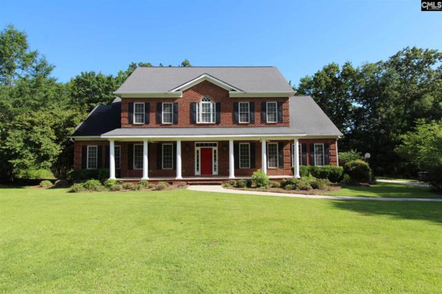 123 Silver Wing Drive, West Columbia, SC 29169 (MLS #465792) :: Home Advantage Realty, LLC