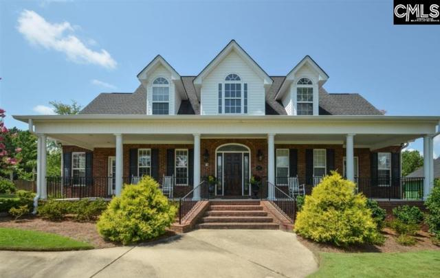 24 Clay Court, Chapin, SC 29036 (MLS #465928) :: EXIT Real Estate Consultants