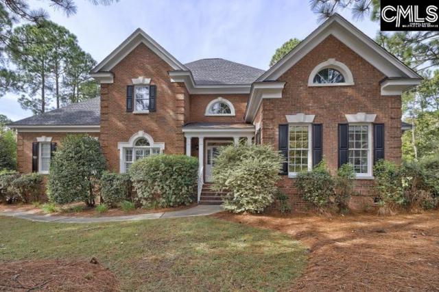 213 Camden Chase, Columbia, SC 29223 (MLS #465955) :: EXIT Real Estate Consultants