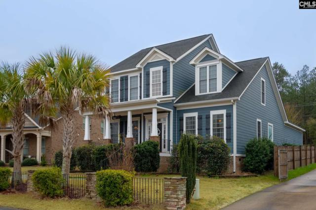 218 Bramble Place, Lexington, SC 29072 (MLS #466055) :: Home Advantage Realty, LLC