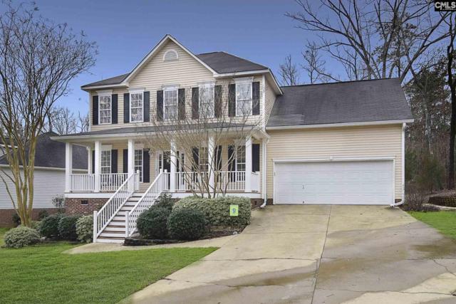 323 Amberwood Circle, Irmo, SC 29063 (MLS #466158) :: EXIT Real Estate Consultants