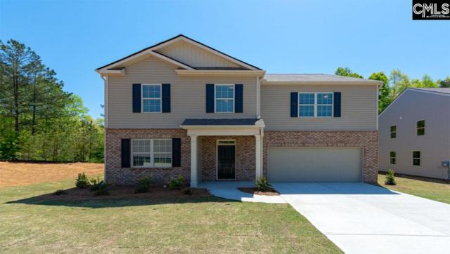 104 Village View Way, Lexington, SC 29072 (MLS #466161) :: The Olivia Cooley Group at Keller Williams Realty