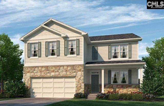 136 Village View Way, Lexington, SC 29072 (MLS #466166) :: Home Advantage Realty, LLC
