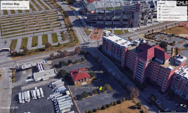 911 S Stadium Road C-15 C-15, Columbia, SC 29201 (MLS #466174) :: Resource Realty Group