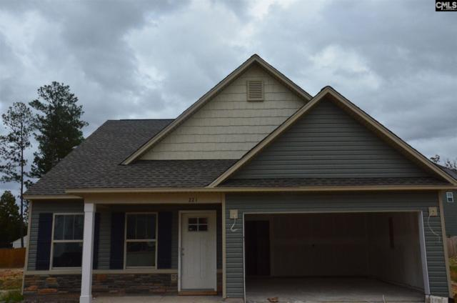 221 St. Charles Place, Chapin, SC 29036 (MLS #466226) :: EXIT Real Estate Consultants