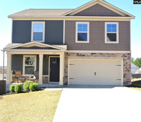 705 Colina Ct, Lexington, SC 29073 (MLS #466266) :: EXIT Real Estate Consultants