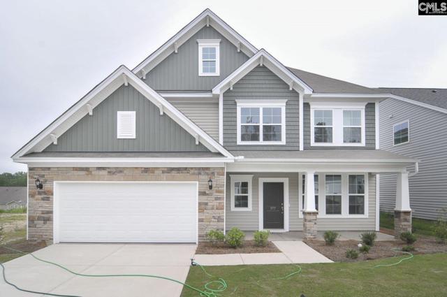 158 Aldergate Drive 15, Lexington, SC 29073 (MLS #466458) :: Home Advantage Realty, LLC