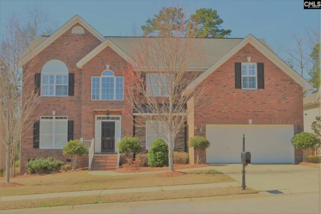 309 Explorer Drive, Chapin, SC 29036 (MLS #466463) :: EXIT Real Estate Consultants