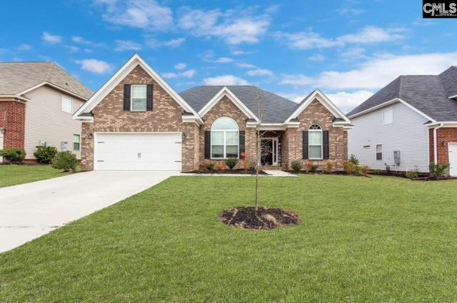 564 Bronze Drive, Lexington, SC 29072 (MLS #466477) :: The Olivia Cooley Group at Keller Williams Realty