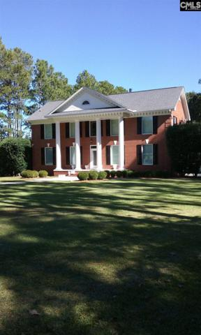 1236 S Fredericksburg Drive, Lugoff, SC 29078 (MLS #466563) :: EXIT Real Estate Consultants