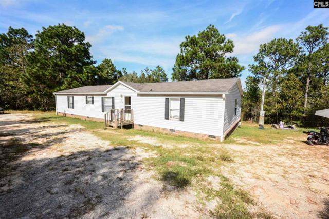 257 Straightaway Lane, Gaston, SC 29053 (MLS #466588) :: The Olivia Cooley Group at Keller Williams Realty