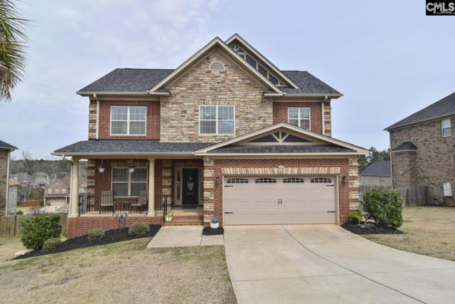 552 Everton Drive, Chapin, SC 29036 (MLS #466864) :: The Meade Team