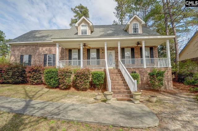 134 Emerald Lake Road, Columbia, SC 29209 (MLS #466934) :: The Olivia Cooley Group at Keller Williams Realty