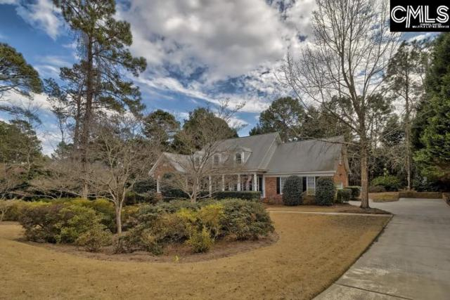 313 Shallow Brook Drive, Columbia, SC 29223 (MLS #467045) :: EXIT Real Estate Consultants