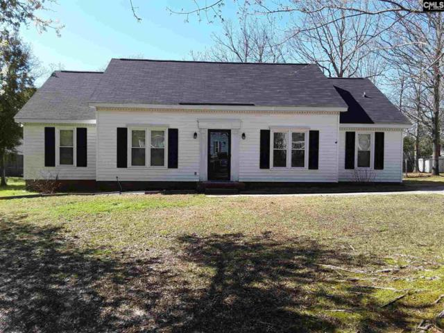 91 Old Well Road, Irmo, SC 29063 (MLS #467074) :: Home Advantage Realty, LLC